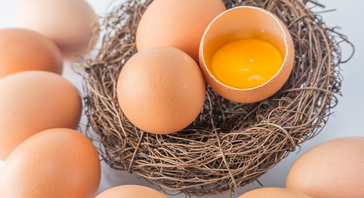 Proteínas del huevo e información nutricional